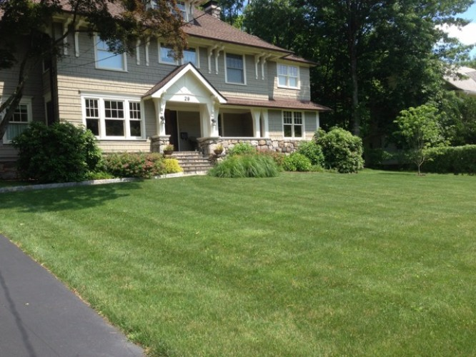 Organic Lawn Practices & Maintenance – Westchester County
