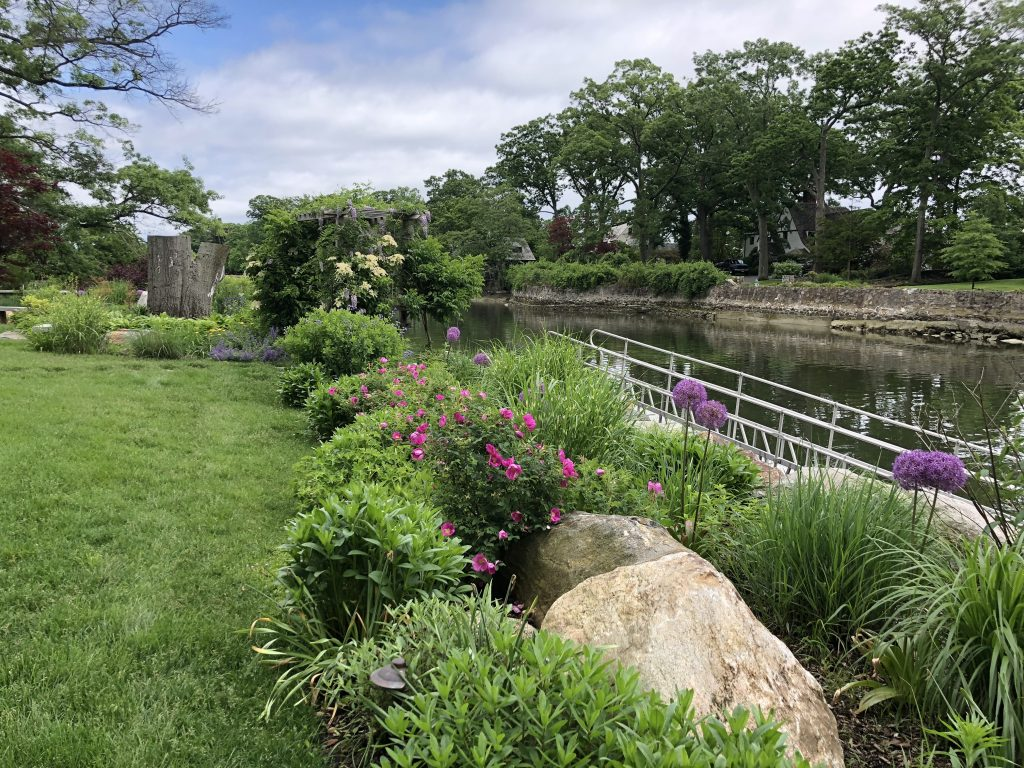 Landscaping with Water: Native Plant Garden, Patio and Natural Swimming Pond Where Heaven Smiles