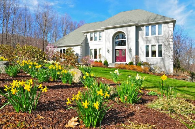 Seasonal Landscape Design – Turning Winter into Spring – Westchester County