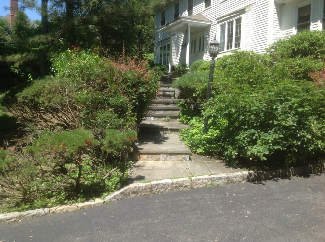 Landscape Renovation, Going Green with Landscapes for Better Living – Chappaqua NY