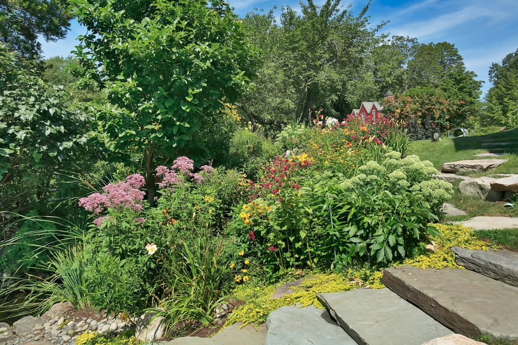 Designing an Organic Pollinator Garden: Tips from a Landscape Ecologist | Fairfield County, CT