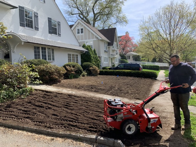Why You Should Skip Your Fall Lawn Renovation & Go Ecological