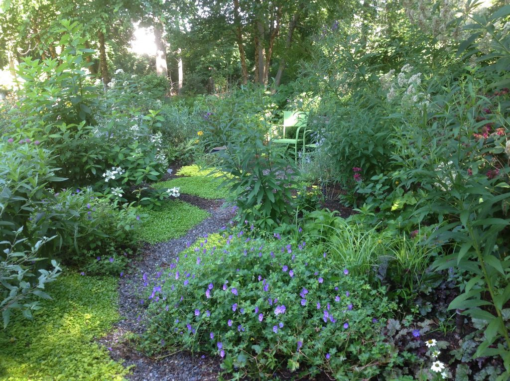 Designing with Native Plants for Ecological Services – Westchester County NY