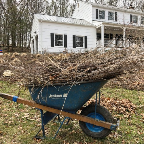 Ecological Practices for Your Landscape Spring Clean Up   Westchester, NY