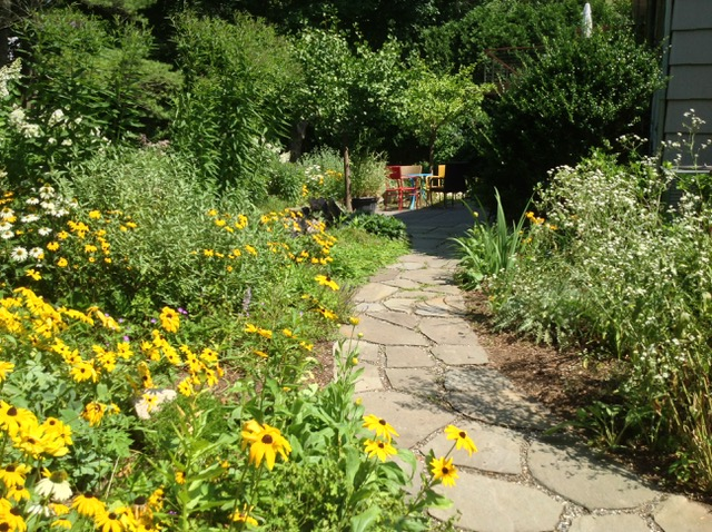 Summer to Fall: The Power of Perennial Gardens