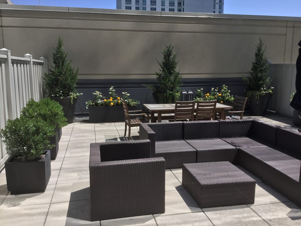 Rooftop Landscape Design & Installation with Native Plants for Pollinators | Stamford, CT