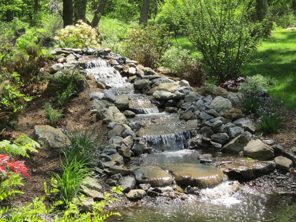 Landscape Design for Natural Mosquito Control (Storm Water Management for Health) | Step 4 for a Healthy Landscape