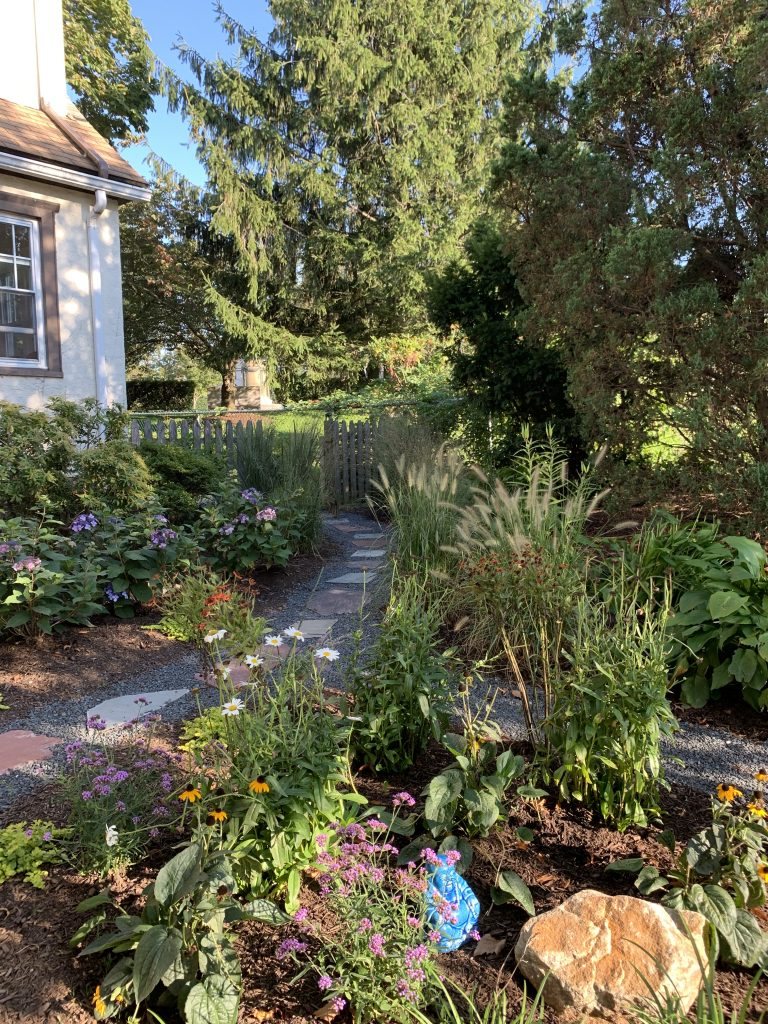 Ecological Landscape Design, No Mow Lawn | Westchester New York