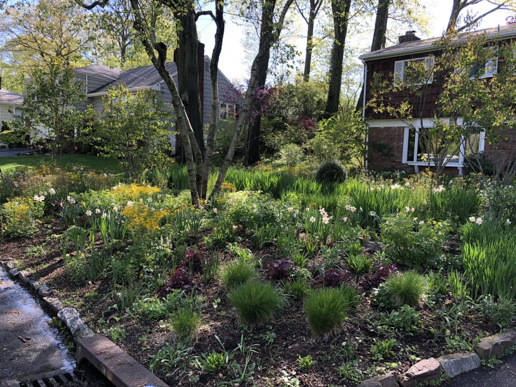 Ecological Landscape Design & Organic Land Care Management | Mamaroneck, NY