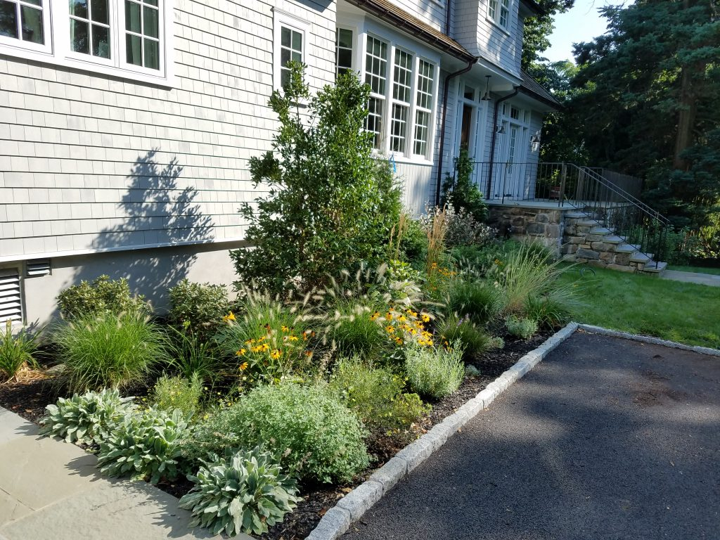 Environmentally-Friendly Landscape Design & Organic Lawn | Mamaroneck, NY