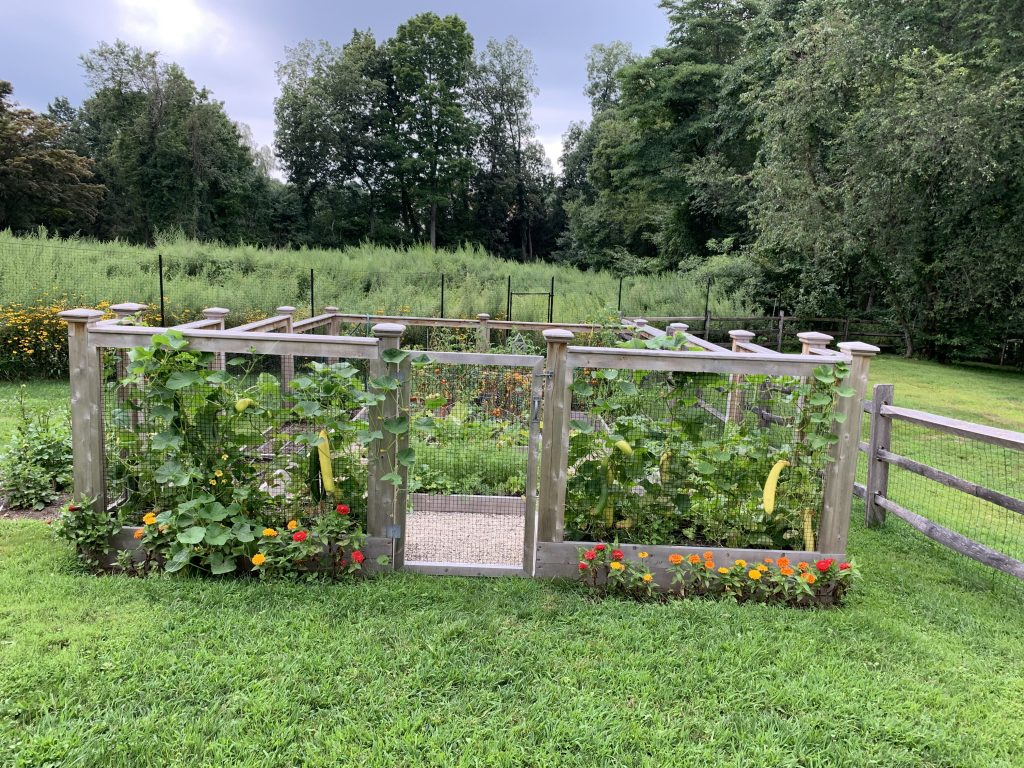 Grow Your Own Organic Food at Home | Professionally Built Vegetable Gardens | Fairfield County CT