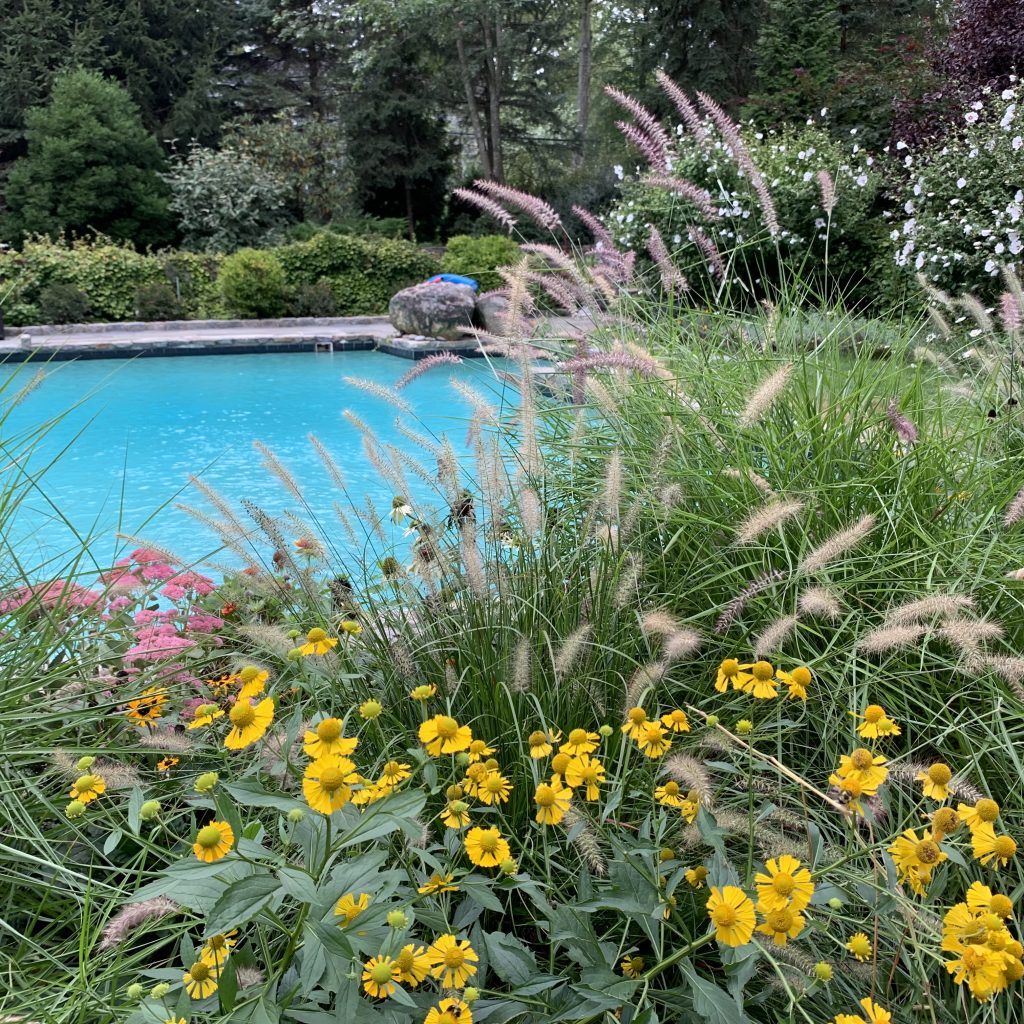 Best Landscape Design in Westchester County, NY: Our Favorite Projects EVER!