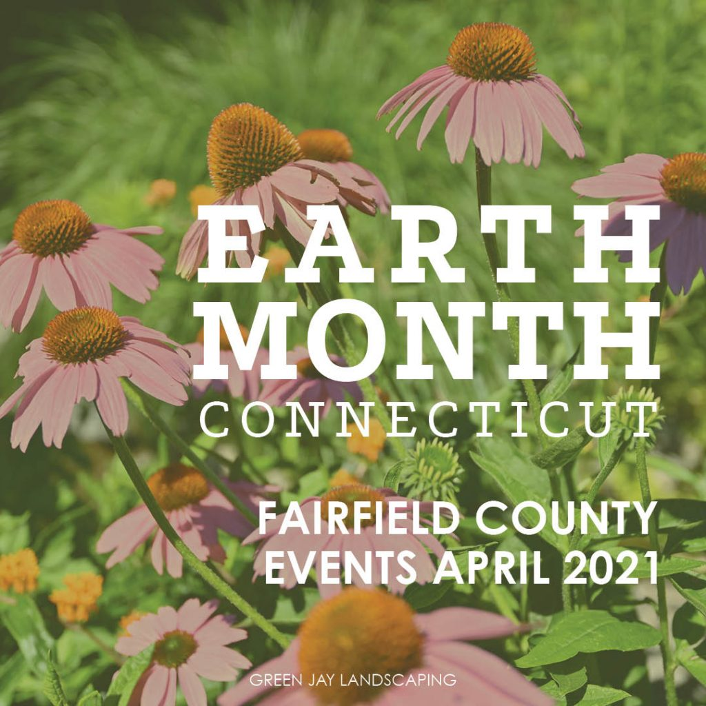 Earth Day 2021 Events  Fairfield County, CT