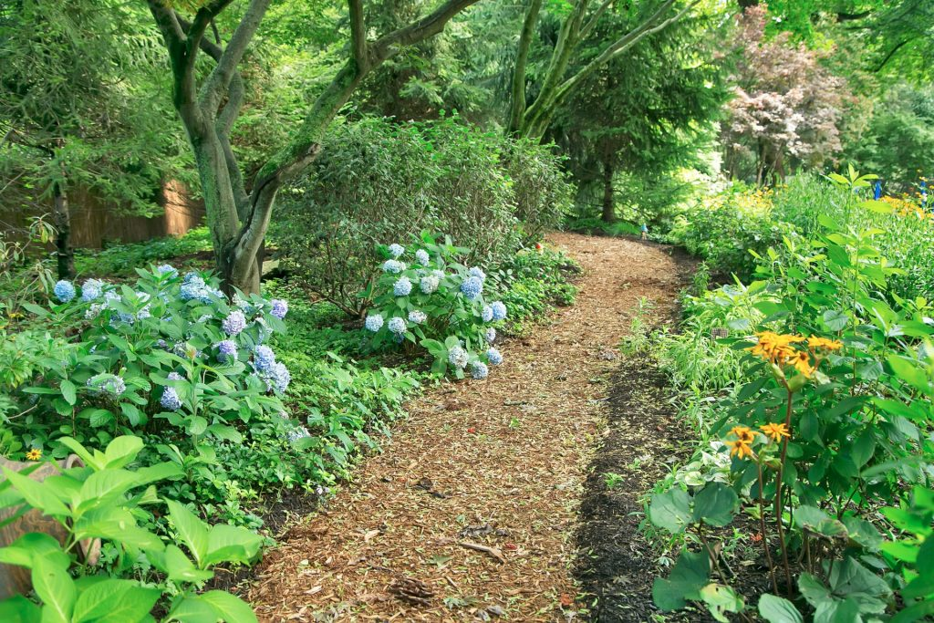 Designing a Private Nature Preserve At Home
