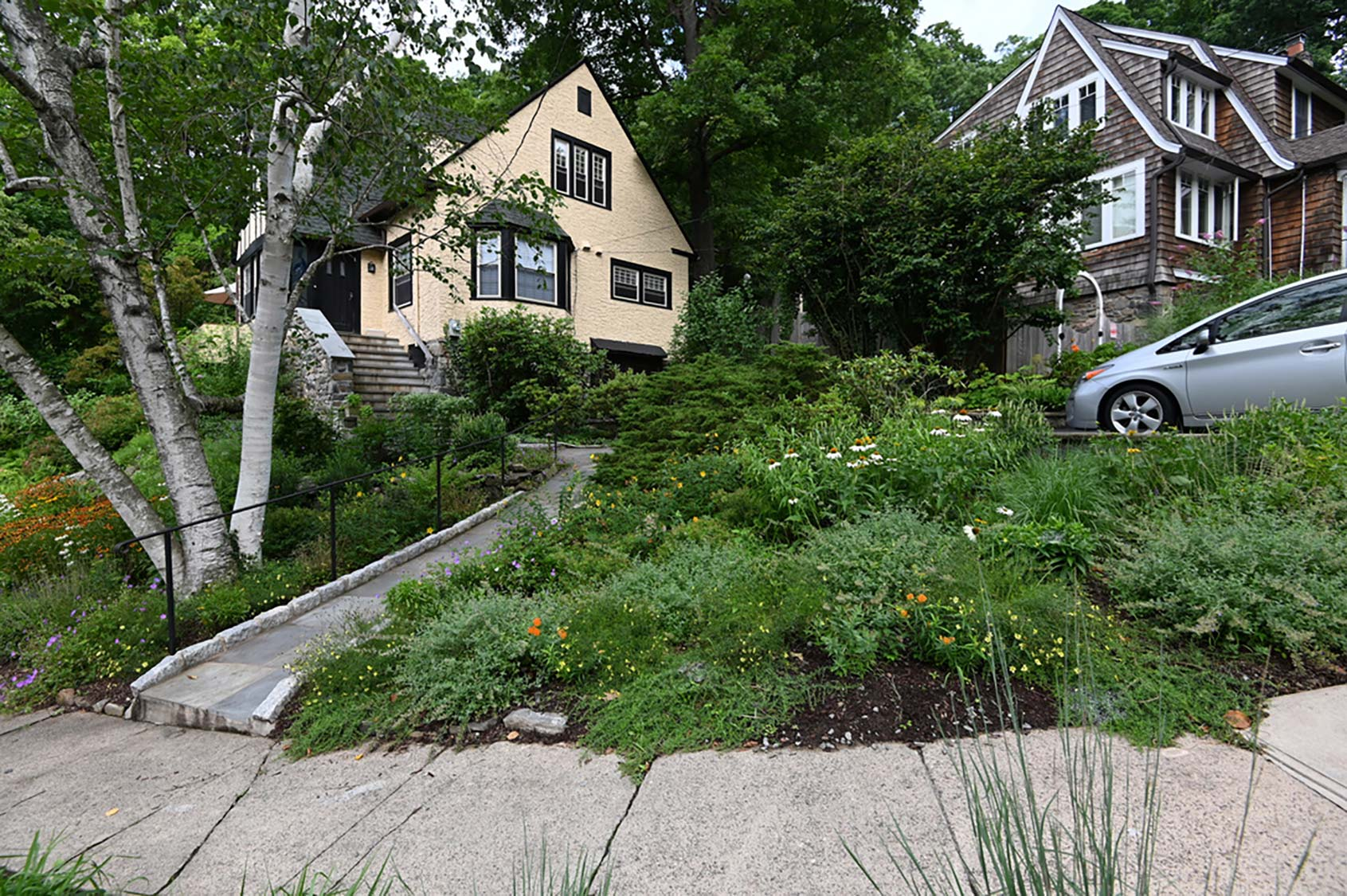 Green Jay Landscaping Rye Ny Ecological Landscaping